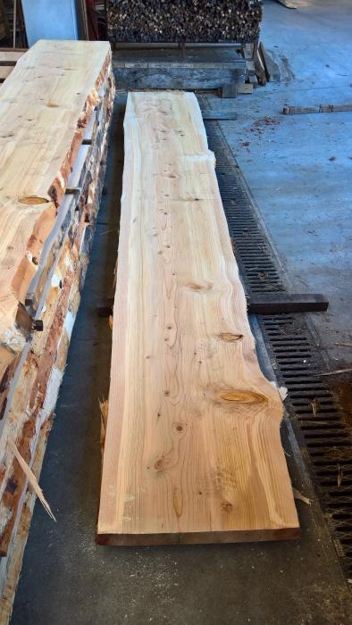 Martignago legno specializzato nella produzione e commercio di ...